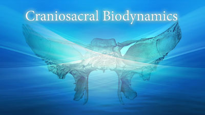 Biodynamic Craniosacral Therapy