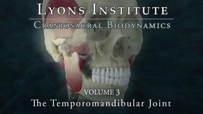 Biodynamic Craniosacral: TMJ