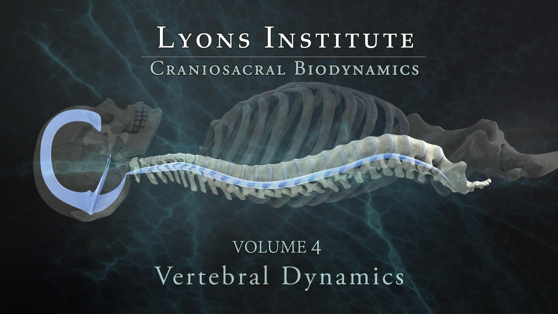 Biodynamic Craniosacral: Spinal Dynamics